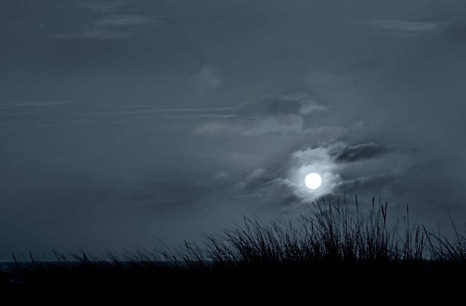 A piece of fine art art photography titled Moonlight Blue by Niels Christian Wulff