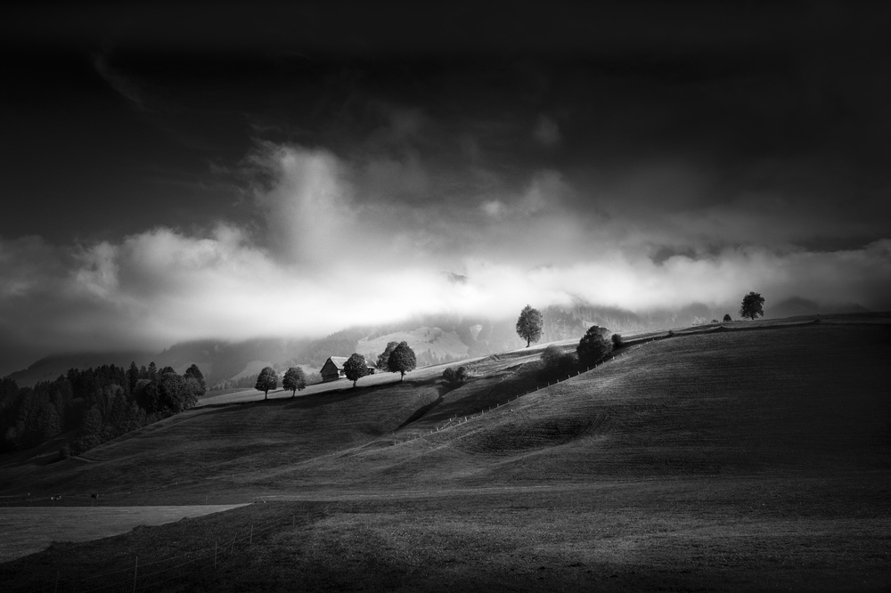 A piece of fine art art photography titled Moody Autumn Day by Franz Engels