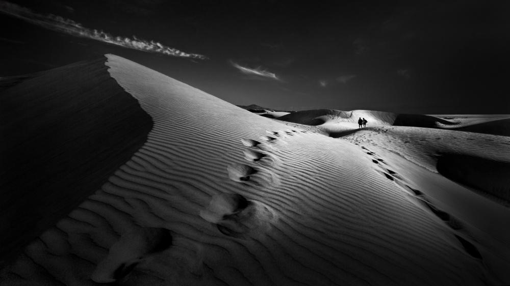 A piece of fine art art photography titled Dune Path by Kerstin Arnemann