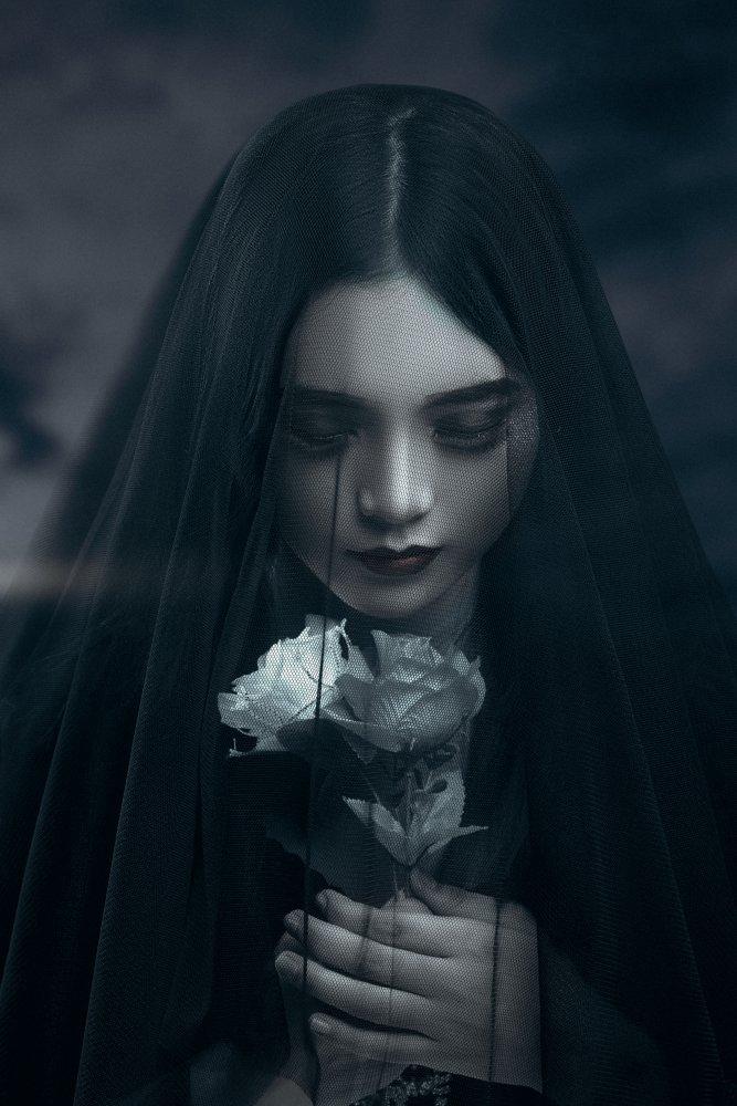 A piece of fine art art photography titled Lady Black Rose by LuLu
