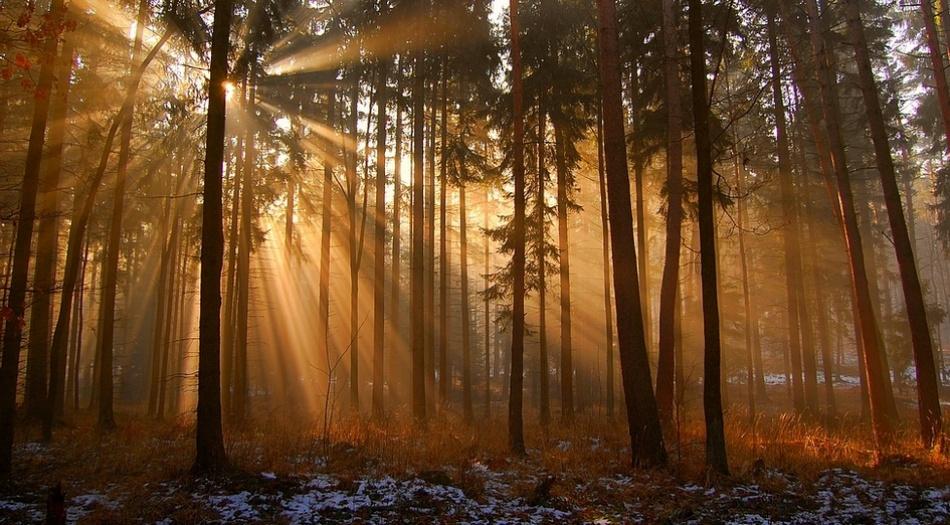 A piece of fine art art photography titled Sunrise by Michal Malinowski