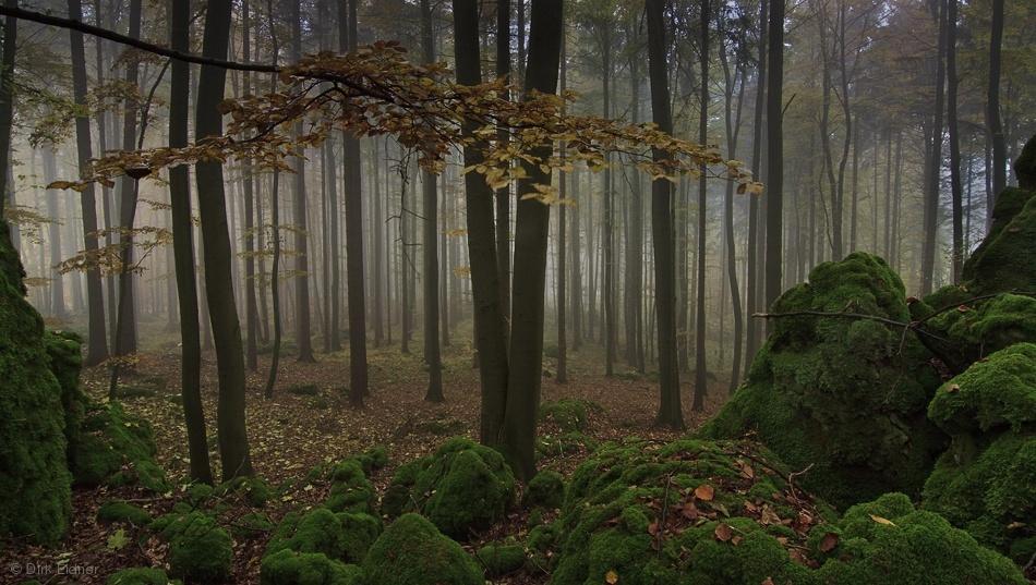 Moss stones