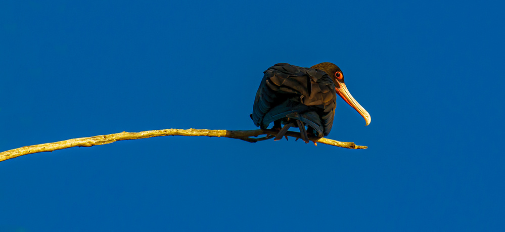 A piece of fine art art photography titled Untitled by Sergey Kokinskiy