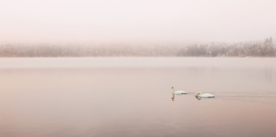 A piece of fine art art photography titled Untitled by Torgeir Solli