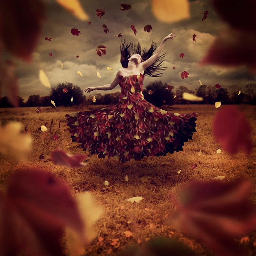 A piece of fine art art photography titled Dance of Leaves by Anja S.