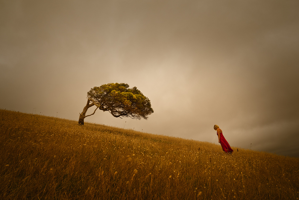 A piece of fine art art photography titled Nature and Human's Sorrow by Ricardo Da Cunha