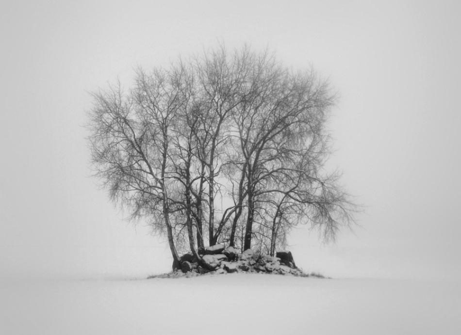 A piece of fine art art photography titled Untitled by Jacob Jovelou