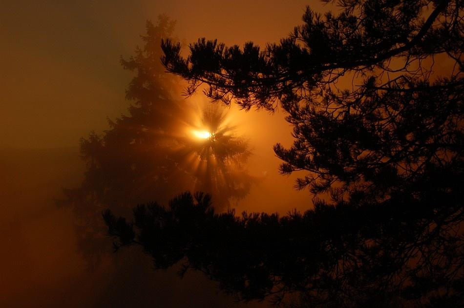 A piece of fine art art photography titled Shine Shine by Endre Adorjan-Birgiszer