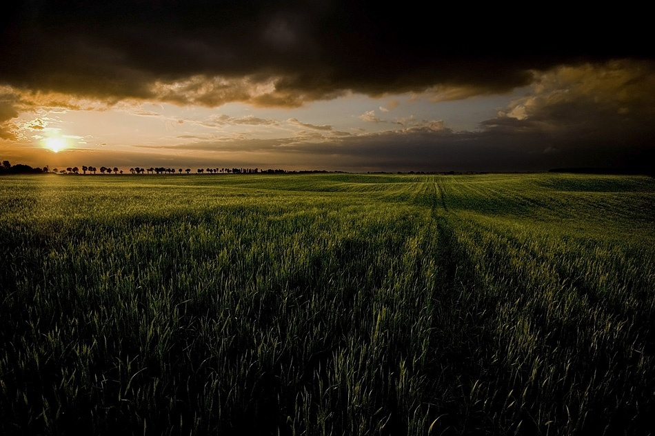 A piece of fine art art photography titled Last Sunbeam by Adam Holweg