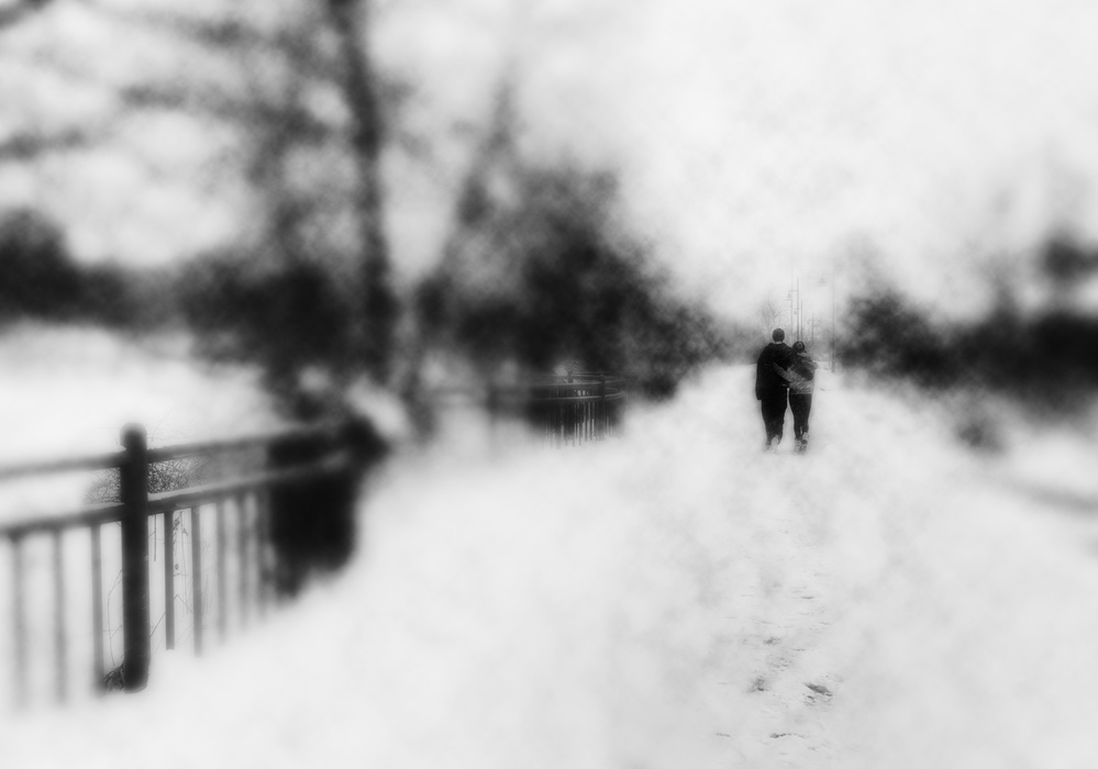 A piece of fine art art photography titled Winter In Toronto by ZP Liu