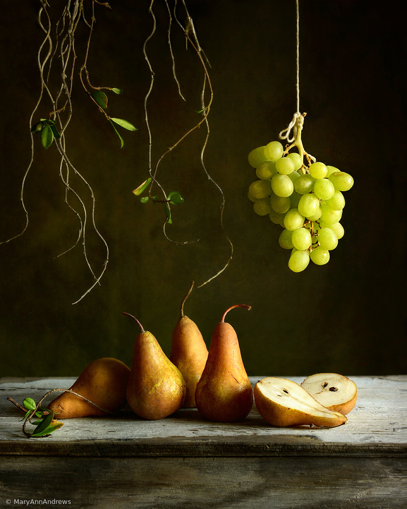 View this piece of fine art photography titled Low hanging fruit by Mary Ann Andrews