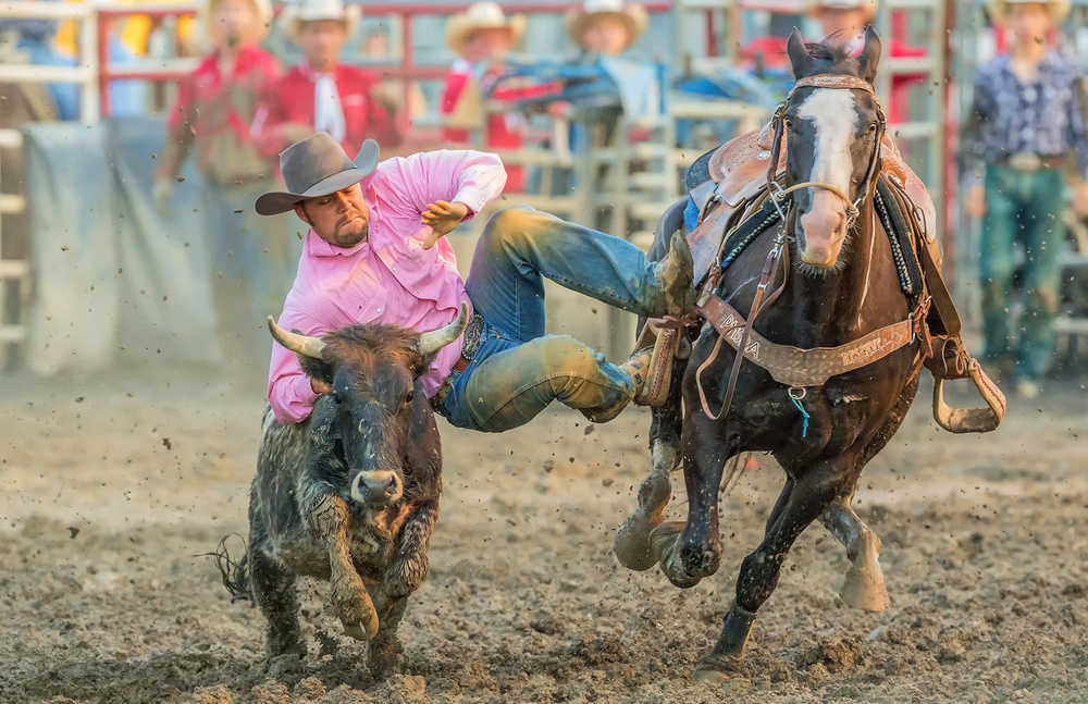 A piece of fine art art photography titled Steer Wrestling by David Hua