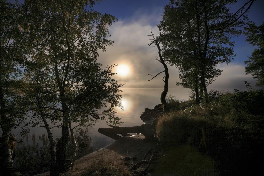 Early morning by Hallsfjärden
