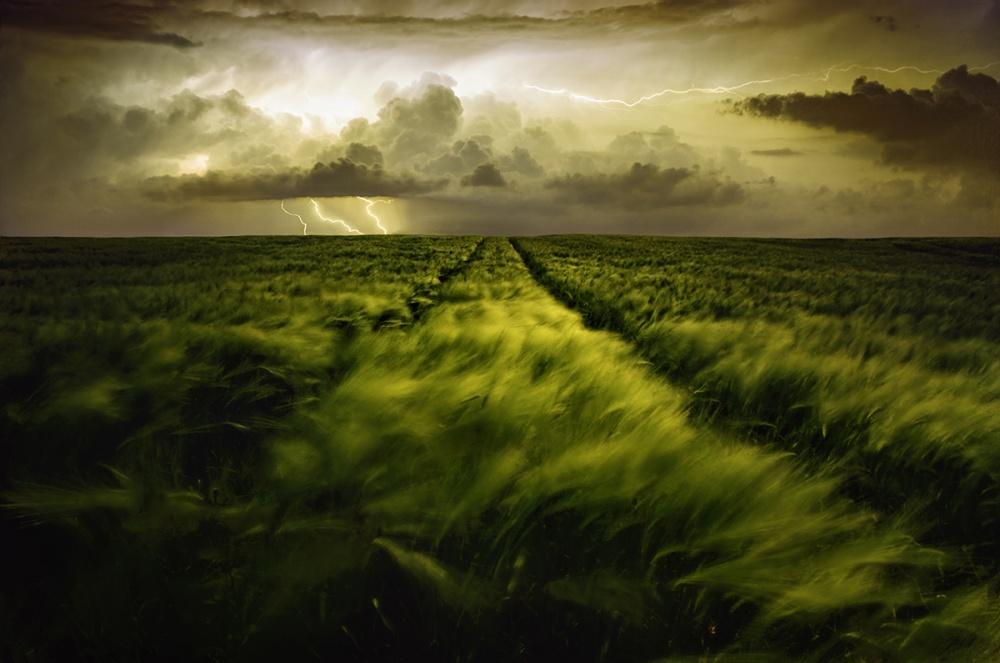 A piece of fine art art photography titled Journey to the Fierce Storm by Sona Buchelova