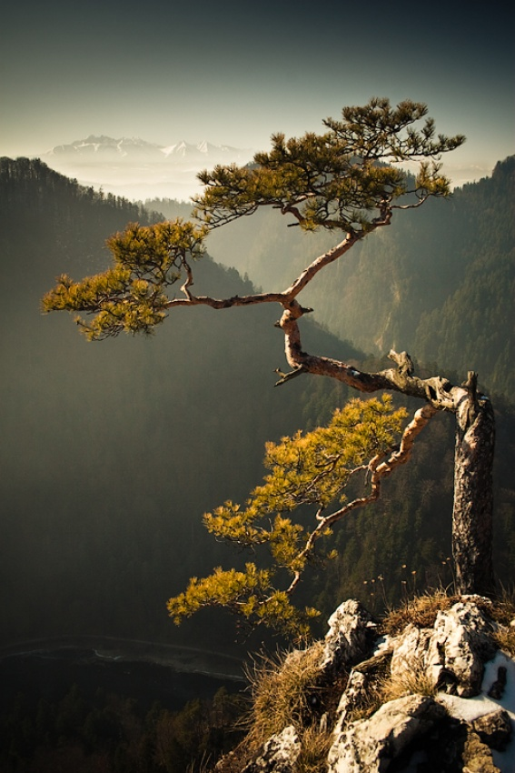 A piece of fine art art photography titled Falcon Cliff by Krzysztof Hubaczek