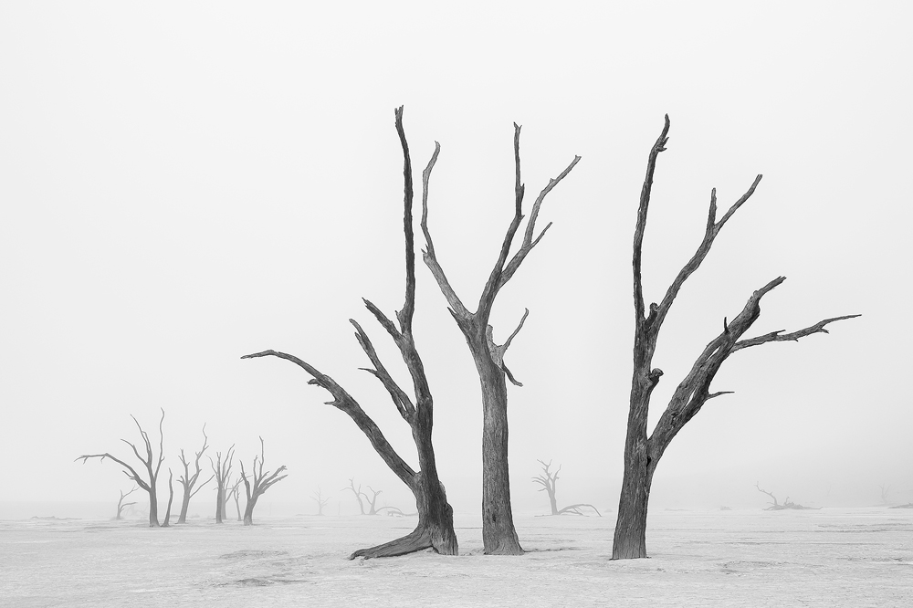 A piece of fine art art photography titled Beyond the Veil of Death II by Marsel van Oosten