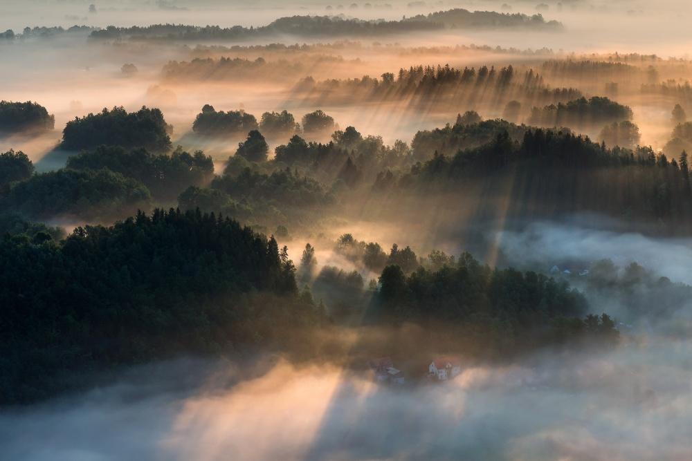 A piece of fine art art photography titled Created by Light by Izabela Laszewska-Mitrega/Darek Mitręga