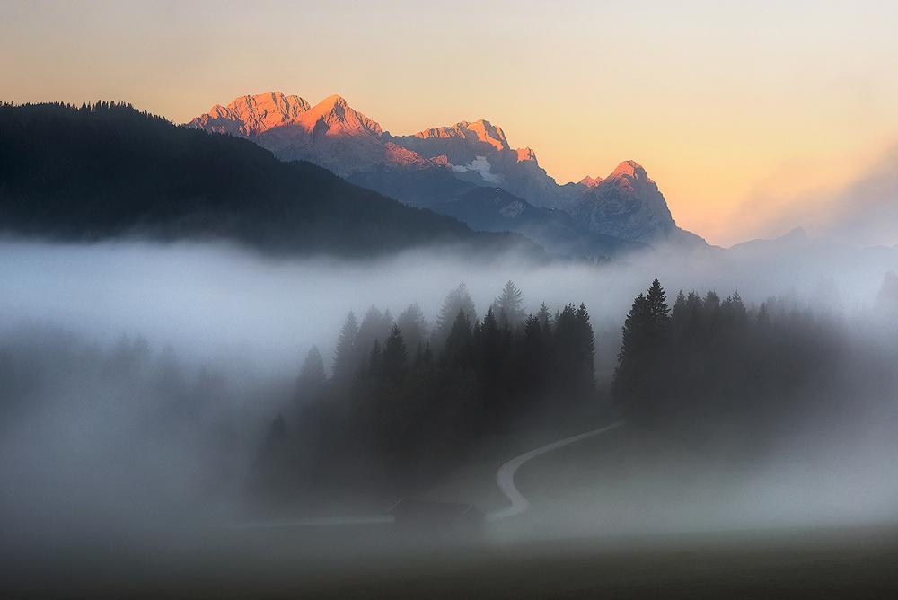--Dreamy Fog--