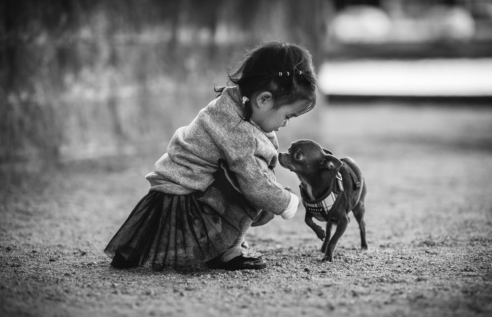 A piece of fine art art photography titled Friends by Derek Zhang