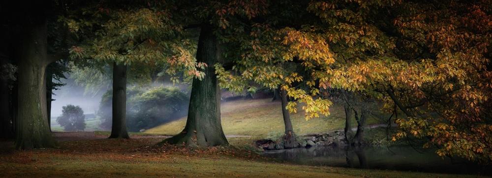 A piece of fine art art photography titled Autumn Nebula by Paula Loonen