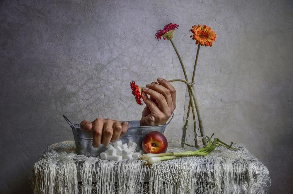 A piece of fine art art photography titled Still Life by Haik Ahekian