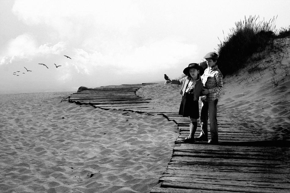 A piece of fine art art photography titled Behavior by storytaylor