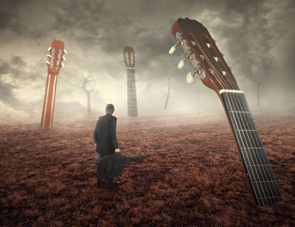 View this piece of fine art photography titled Guitar field by Nermin Smajić