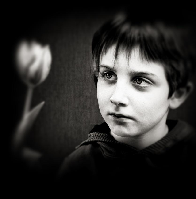 A piece of fine art art photography titled F R a G I L E by aleci
