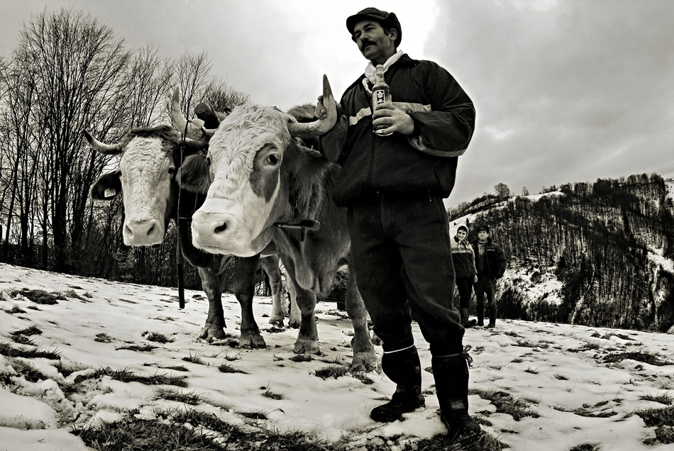 A piece of fine art art photography titled Winter Tale by Mihaela Gradinaru