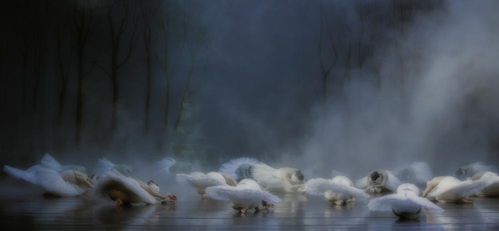 A piece of fine art art photography titled Von Rothbart's Curse by Peet van den Berg
