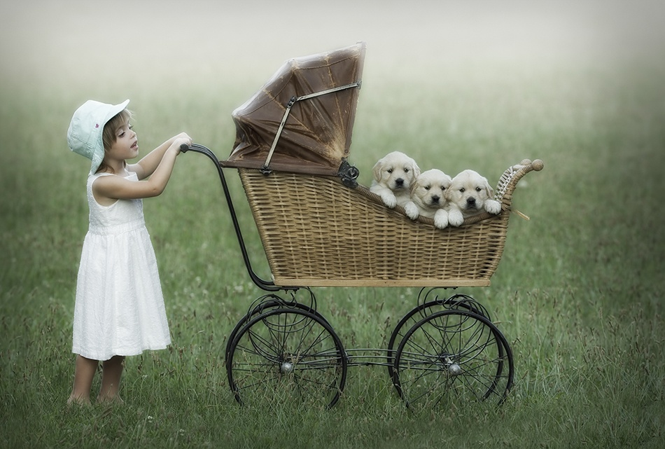 A piece of fine art art photography titled Little Riley and Her Pooches by Christopher Schlaf