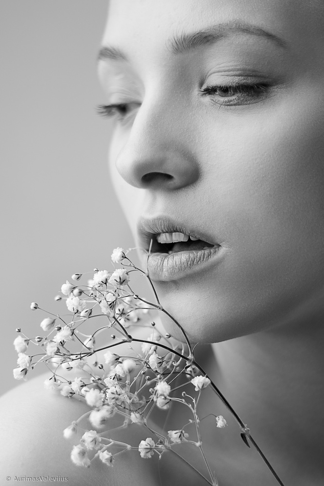 View this piece of fine art photography titled Gypsophila by Aurimas Valevičius