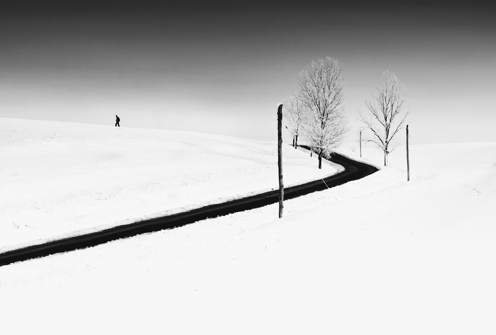 A piece of fine art art photography titled Alone by catalin alexandru