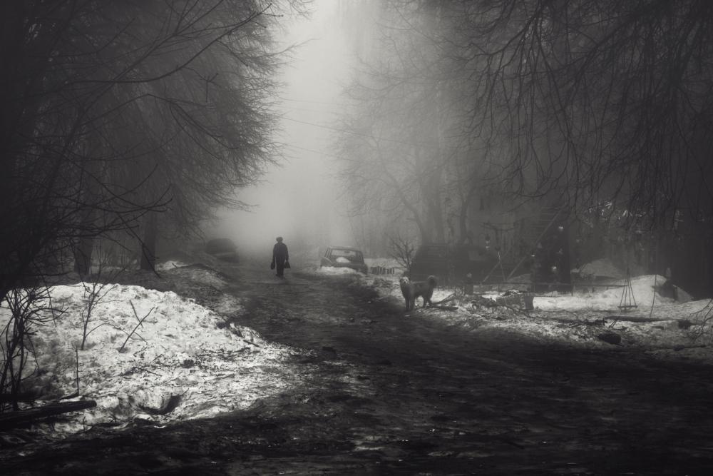 A piece of fine art art photography titled Street by Alex Elfimchev