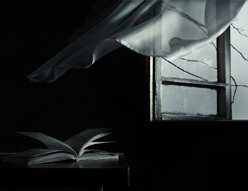 A piece of fine art art photography titled Cold Wind by Larisa Lofitskaya