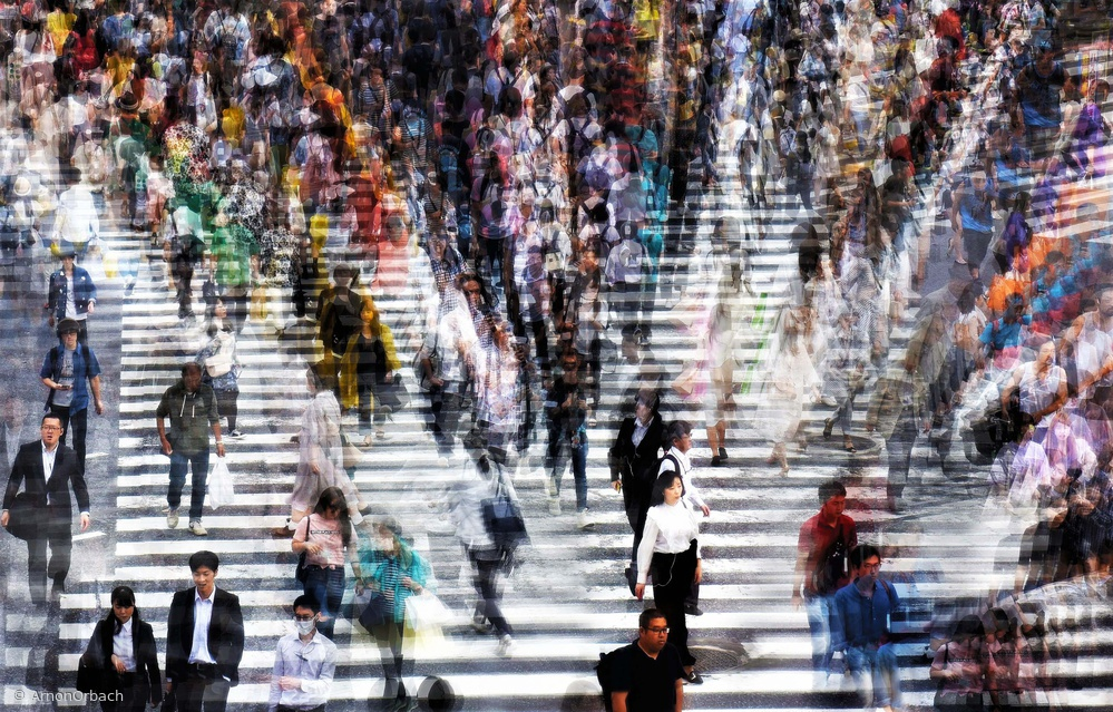 View this piece of fine art photography titled  Shibuya Tokyo, Japan. The center of it all. by Arnon Orbach