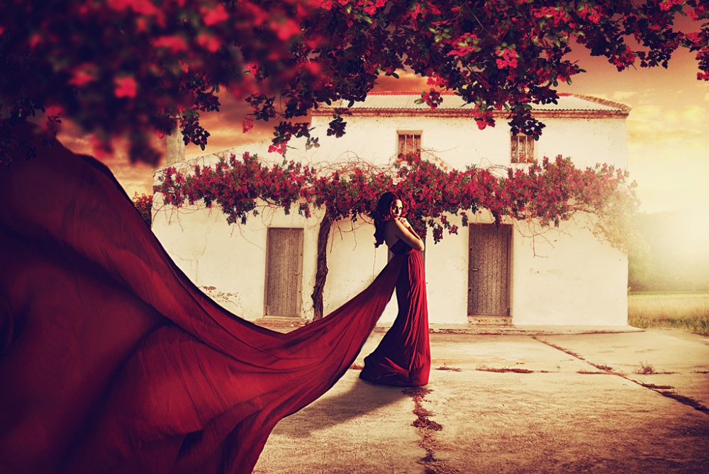 A piece of fine art art photography titled Red by can çaglar