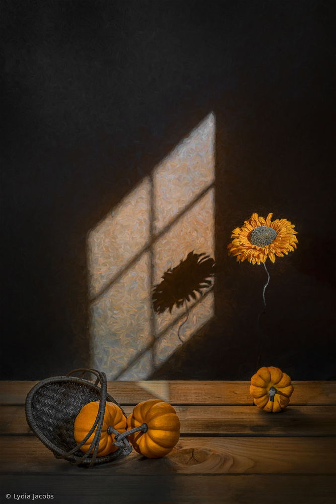 View this piece of fine art photography titled Orange Squash by Lydia Jacobs