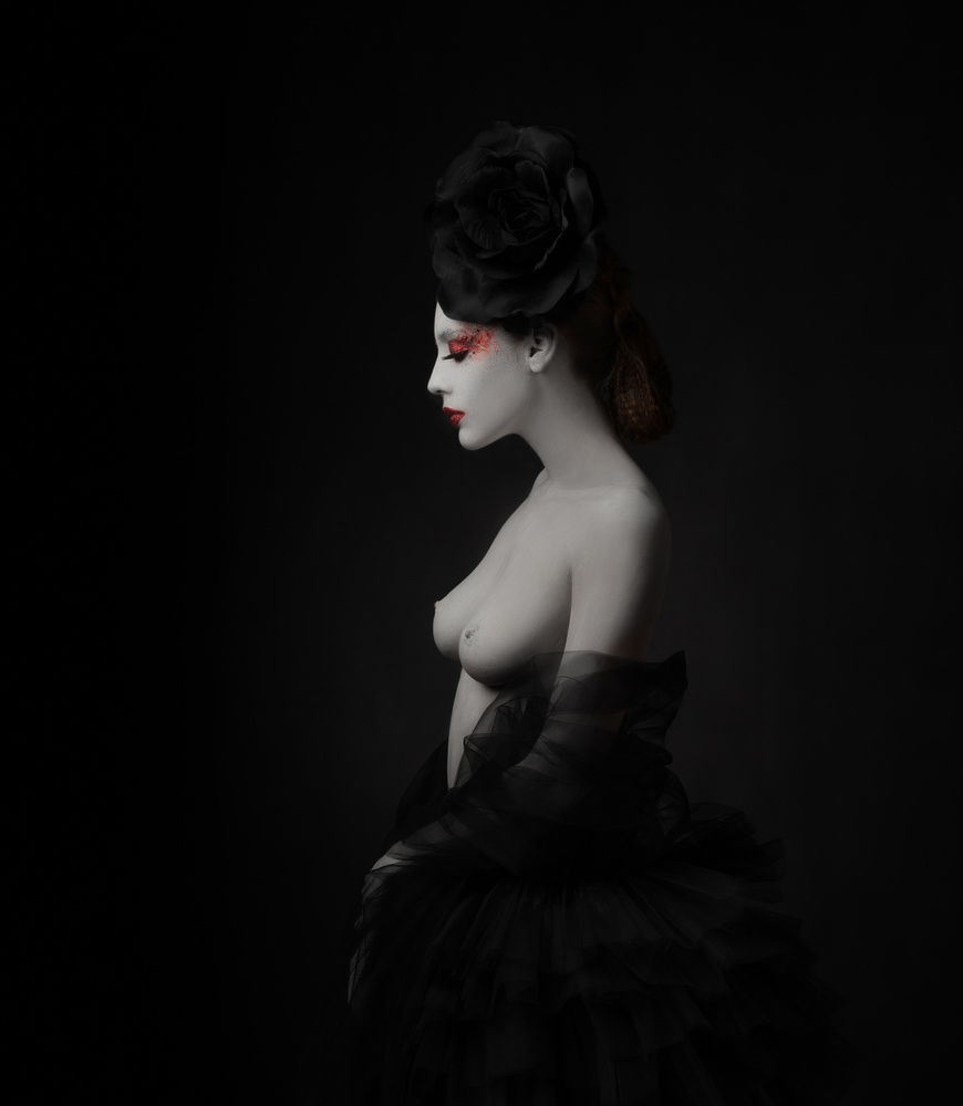 View this piece of fine art photography titled Black Rose Profile... by Alfredo Sanchez