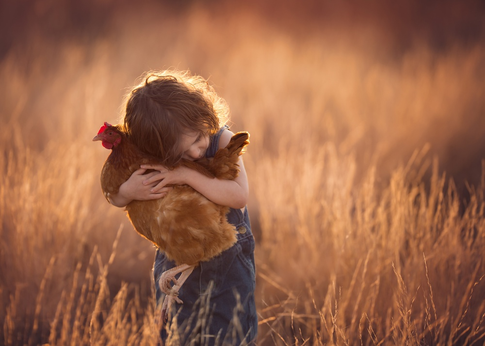 A piece of fine art art photography titled Farm Boy by Lisa Holloway