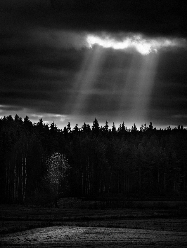 A piece of fine art art photography titled Sunrays by Joni Niemelä