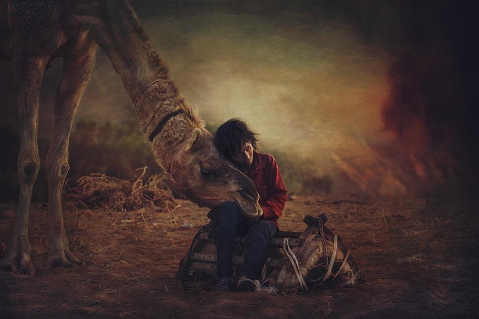 A piece of fine art art photography titled Camel Boy by Svetlin Yosifov