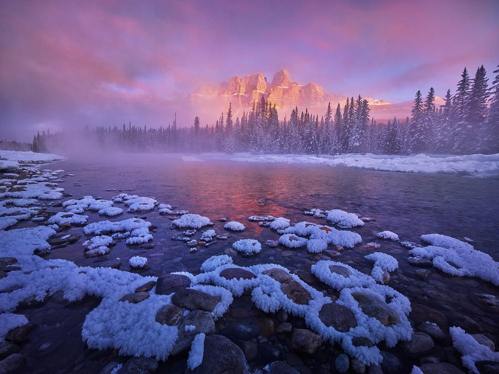The Frozen Castle