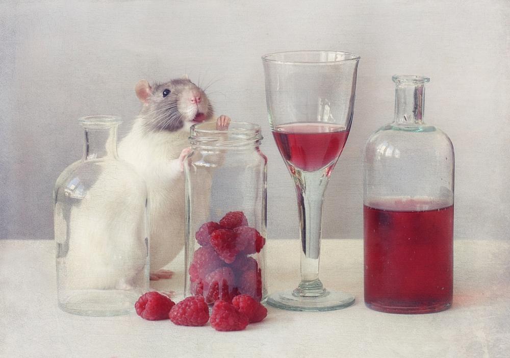 A piece of fine art art photography titled Raspberries by Ellen van Deelen