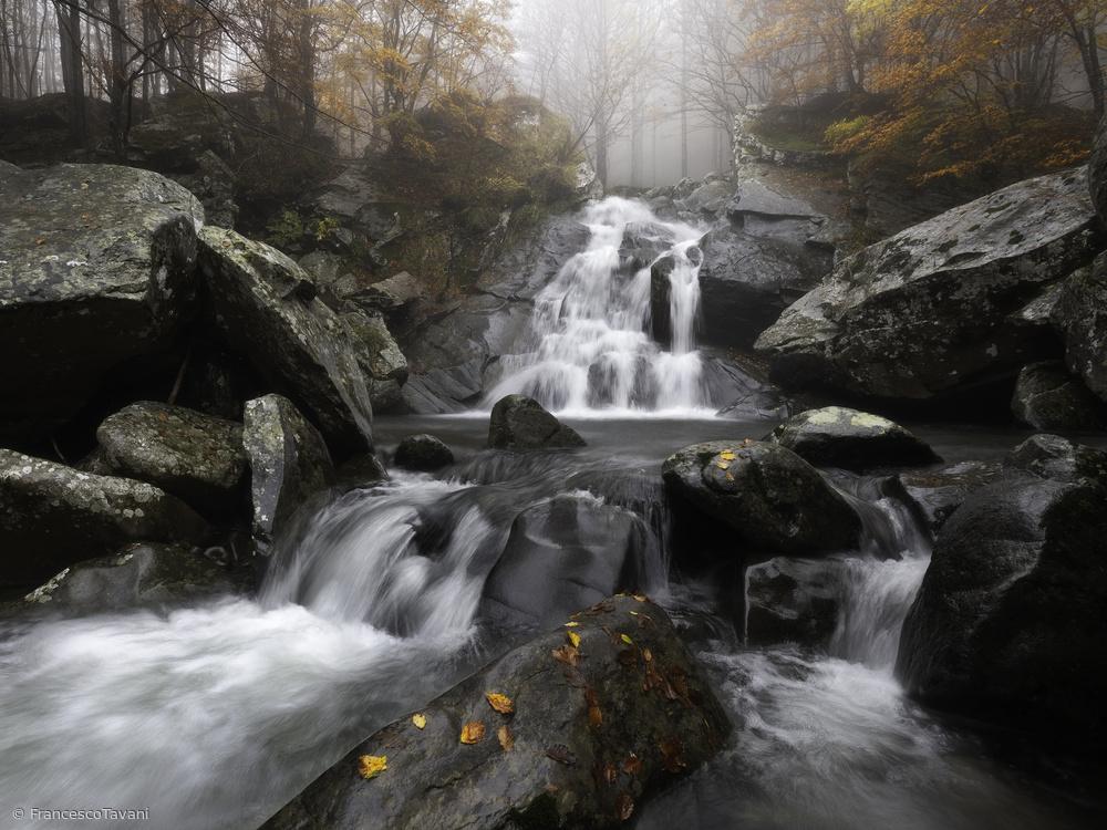 View this piece of fine art photography titled Autumn fog by Makiko Samejima