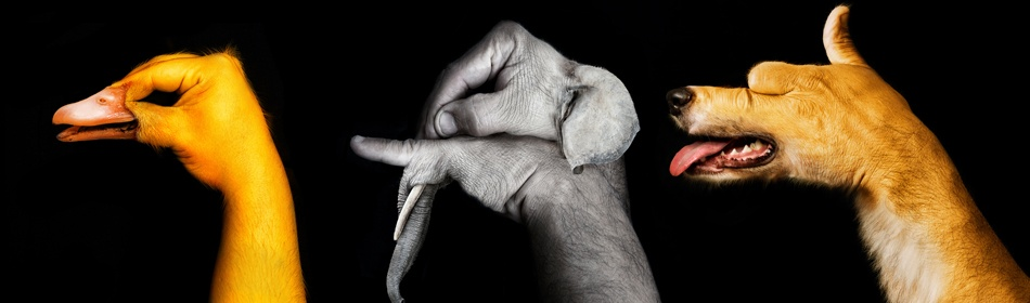 A piece of fine art art photography titled The World In Our Hands! by moshe nachumovich