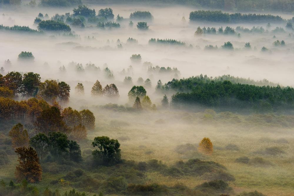 A piece of fine art art photography titled Autumn Dream by Roberto Marini