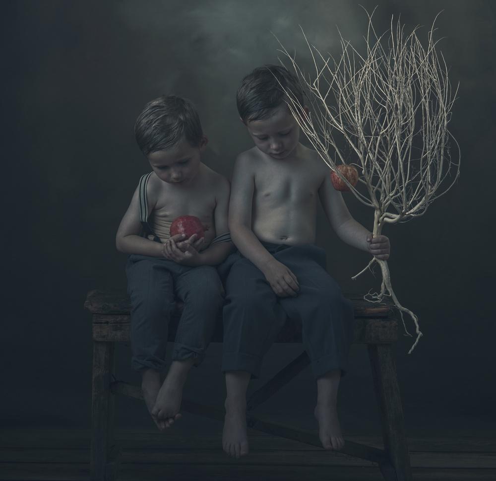 A piece of fine art art photography titled Appel by Ewa Cwikla