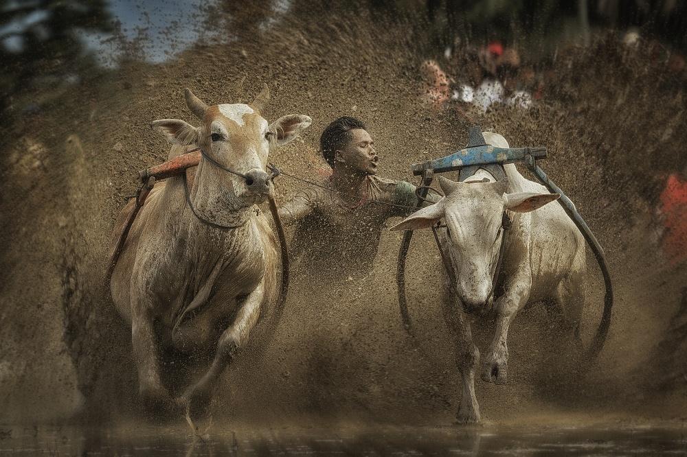 A piece of fine art art photography titled Extra Ordinary by Fauzan Maududdin